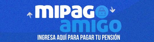 ICONO DE PAGOS