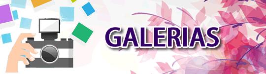 galerias1