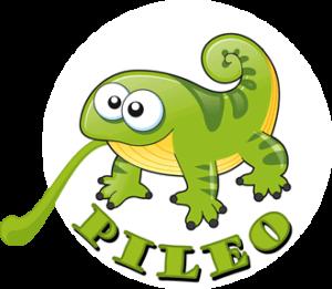 pileo